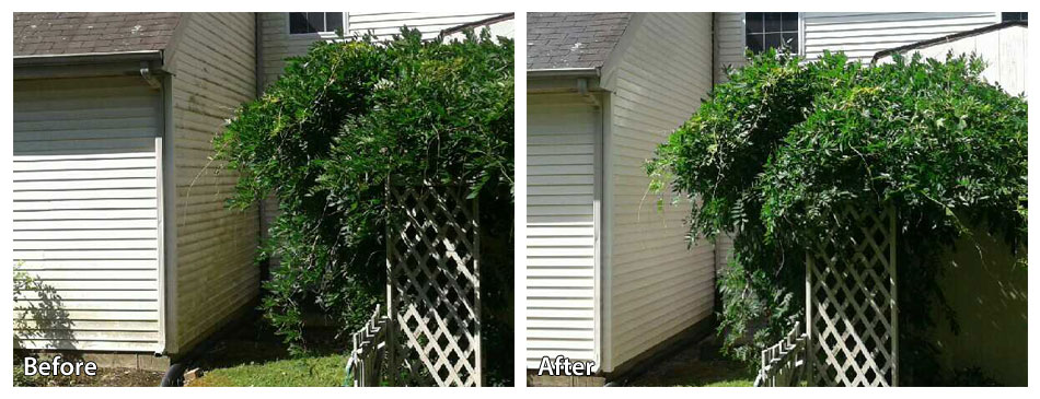 Before and After Pressure Washing Siding in New Hope