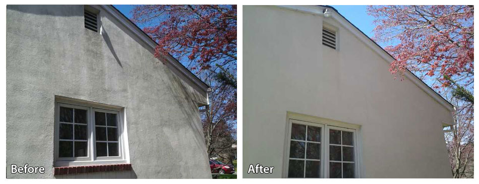 Before and after pressure washing siding in Newtown Square with pink tree