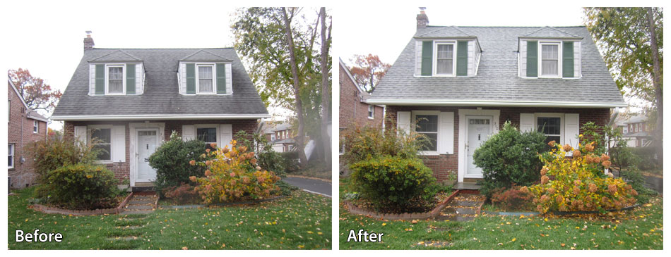 before and after cleaning a roof