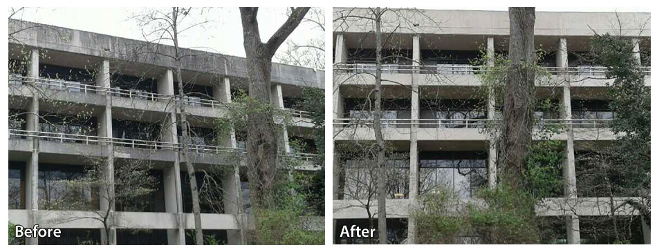 Villanova College Before and After Power Washing